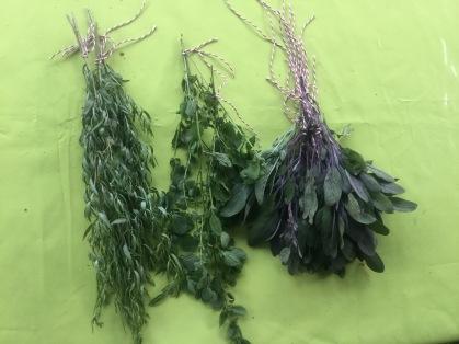 Estragon, Zitronenmelisse, Salbei
