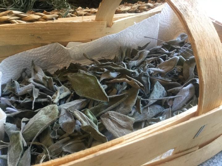 Salbei für Kurzgebratenes und Tee